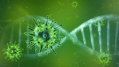 Koronavírus: a GVH jó tanácsai fogyasztóknak, hirdetoknek, hirdetések közzétevoinek
